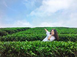 Top 10+ địa điểm du lịch Nghệ An không thể bỏ qua